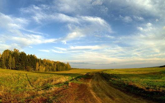 Обои Дорога в поле, уходящая в даль
