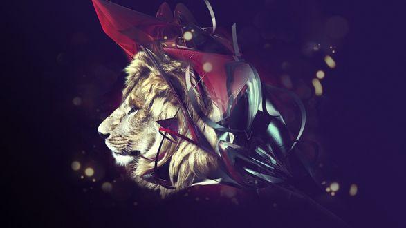 Обои Морда льва, оплетенная абстрактным нечто