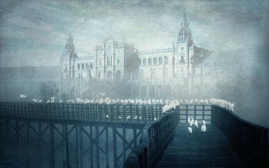 Обои Мост, на котором сидят птицы, на фоне красивого большого дома