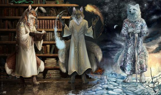 Обои Лиса на фоне библиотеки, держащая в лапах книгу, волк, управляющий огненной и ледяной стихией и белый волк на фоне северного пейзажа, триптих художницы под ником Tatchit