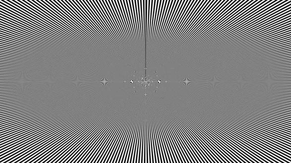 Черно белая графика птицы