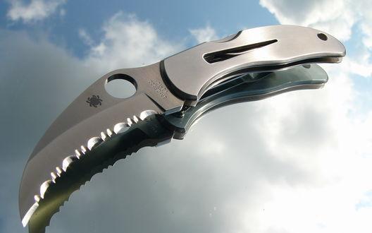 Обои Складной нож Spyderco и его отражение