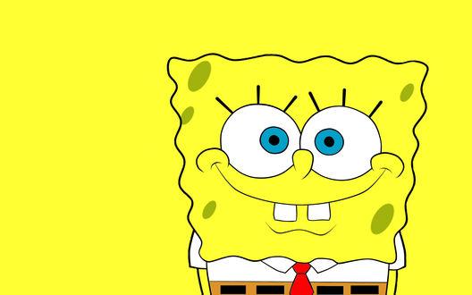Обои Губка Боб квадратные штаны / Sponge Bob Square Pants