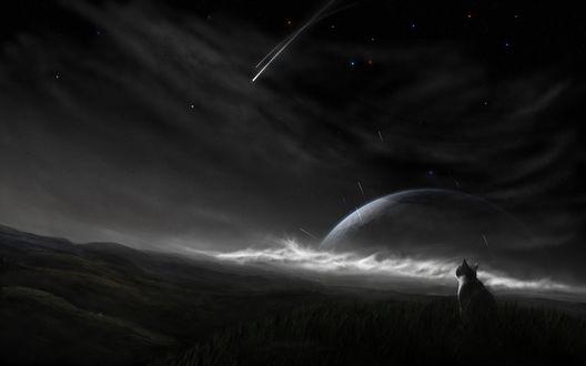 Обои Кот смотрит на ночное звездное небо с падающими метеоритами и большой неизвестной планетой