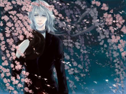 Обои Главный герой японского сериала Бем – человек - демон / Humanoid Monster Bem / Yokai Ningen Bem - красивый беловолосый юноша в черном пиджаке, с повязанной на шее серой лентой и со шляпой в руке, ночью, стоит среди цветущей сакуры, арт / art