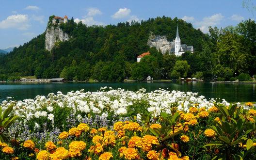 Обои Бледское озеро, Словения / Lake Bled, Slovenia на фоне цветов и старинных построек