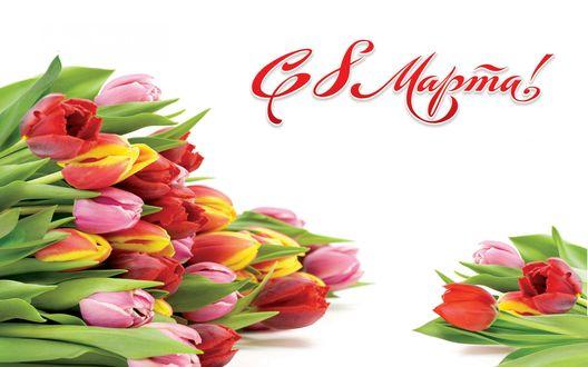 Обои Подарочный букет красных, розовых и желто-красных тюльпанов с зелеными листьями на белом фоне и надписью С 8 Марта!