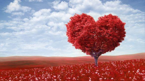 Обои Красное дерево в форме сердца на фоне голубого неба и облаков