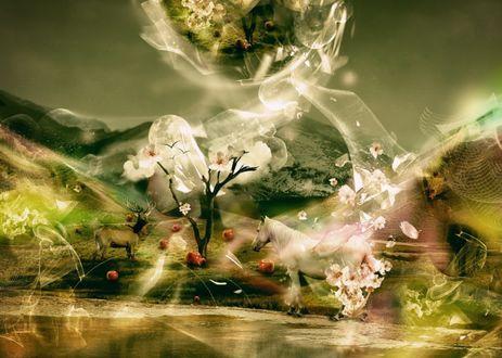 Обои Белая лошадь и олень у цветочного дерева с птицами, под которым лежат яблоки, растущему перед водоемом, на фоне гор и полной луны
