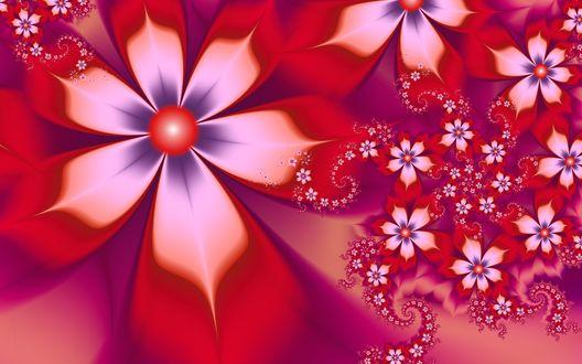 Обои Красные фрактальные цветы на розовом фоне