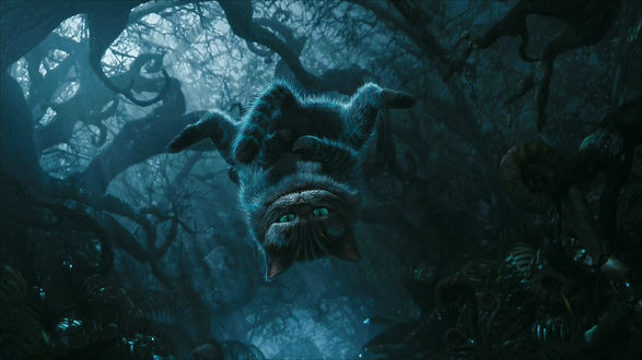 Обои Чеширский Кот / Cheshire Cat висит вниз головой на дереве из фильма «Алиса в стране чудес» / «Alice in Wonderland»