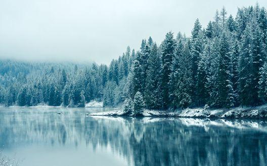 Обои Озеро у зимнего леса, США, Канада, река Кутеней / United States, Canada, the Kootenay River