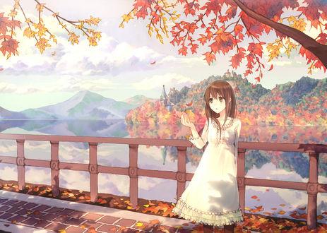 Обои Девушка стоит на мосту около реки, а в руках держит опавший осенний лист с дерева