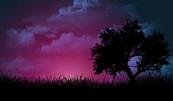 Обои Дерево в высокой траве на фоне фиолетовых облаков