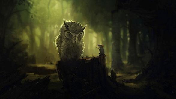 Обои В темном лесу на пне сидят филин и мышка