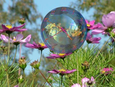 Обои Цветы на фоне неба и шар, с нанесенным на него циферблатом часов, в котором отображен человек и дома