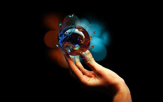 Обои В руке человека прозрачный переливающийся цветами шар, вокруг которого летают бабочки