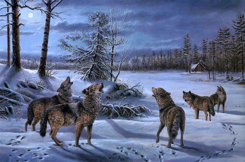 Обои Воющие волки на луну