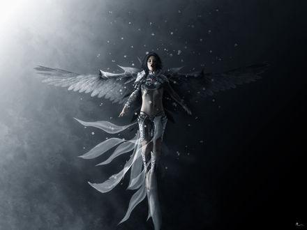 Обои Ангел в белых снежинках
