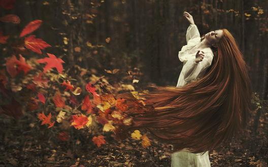 Обои Девушка взмахивает длинными рыжими волосами, из которых разлетаются осенние листья