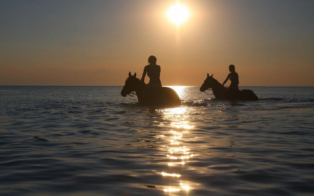 Обои для рабочего стола Девушки купают лошадей в море