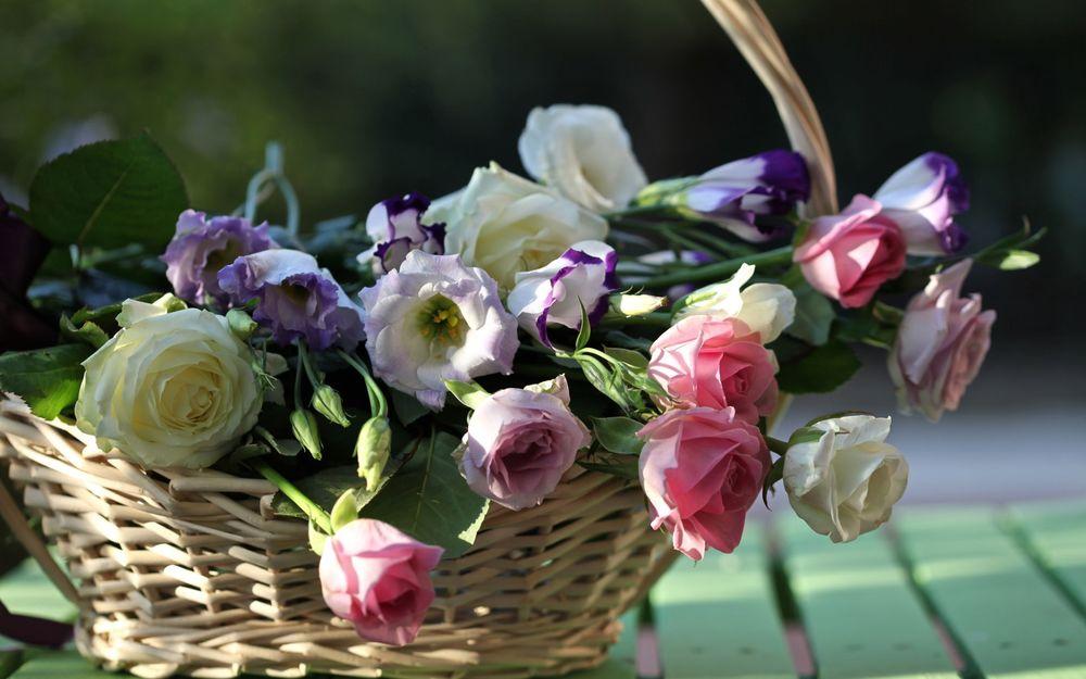 корзина цветов картинки для рабочего стола