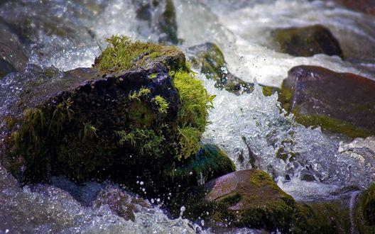 Обои Течение реки, омывающее камни