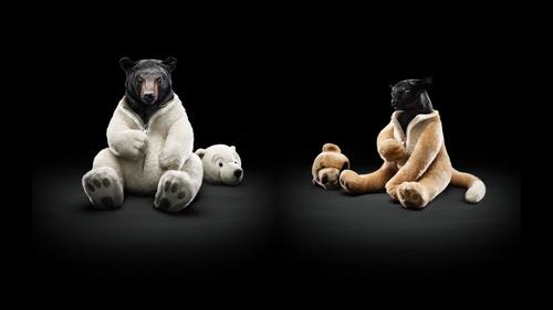 Обои Медведь в белом костюме мишки и черная пантера в костюме пумы ...