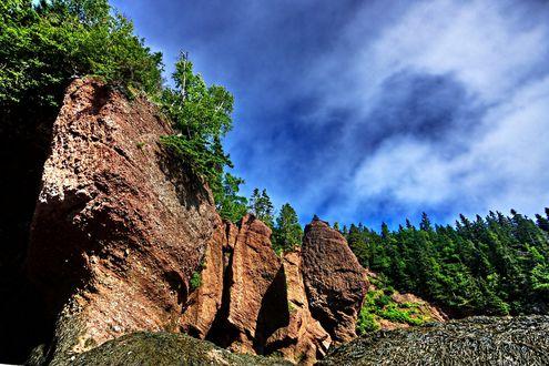 Обои Каменистый холм поросший хвойными деревьями
