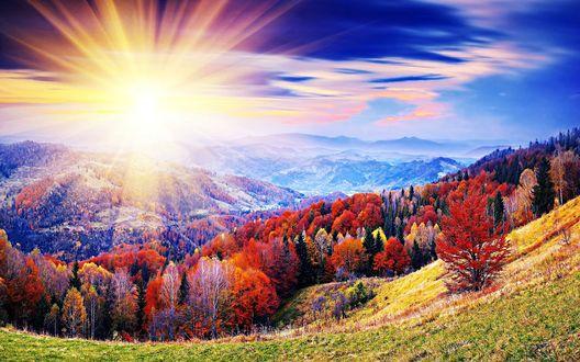 Картинки по запросу осень солнце