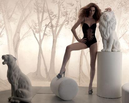 Обои Девушка в комбидрессе между статуями льва и львицы, реклама нижнего белья La Perla