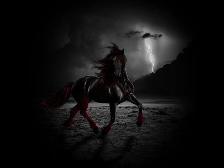 Обои Черный конь с красной гривой в грозу на пляже