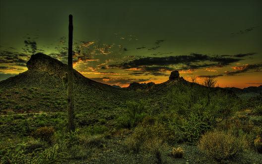 Обои Небо окрашенное в зеленые тона на закате в мексиканской пустыне
