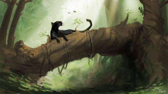 Обои Черная пантера лежит на стволе упавшего дерева в лесу и смотрит на бабочек