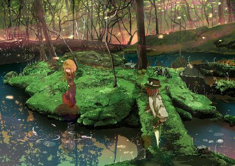 Обои Renko Usami / Ренко Усами и Maribel Han / Марибель Хан смотрят на плавающих в лесном пруду рыбок из серии компьютерных игр Тохо / Touhou Project
