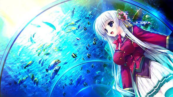 Обои Ashwin Aina в красивой школьной форме и цветочной заколкой в волосах стоит в океанариуме из игры - визуальной новеллы Prism Recollection (художник Shintaro)