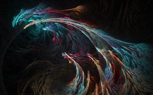 Обои Фракталы - разноцветные перья