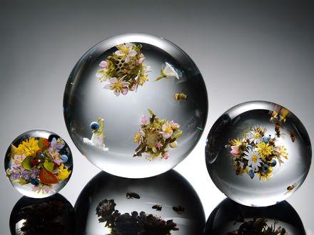 Обои Прозрачные шары с пчелами и цветами внутри