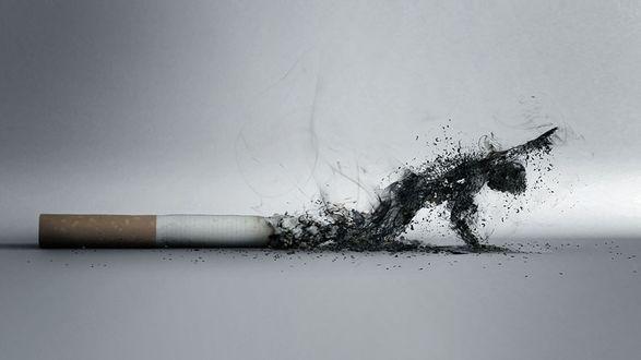 Обои Тлеющая сигарета