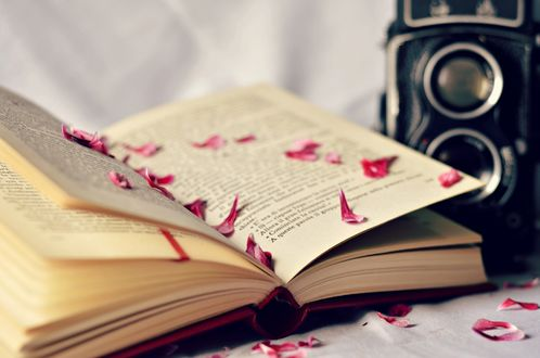 Обои Камера рядом с раскрытой книгой, в которой рассыпаны розовые лепестки