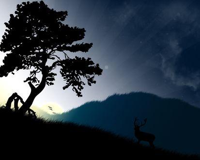 Обои Олень на рассвете около дерева, на фоне гор и неба