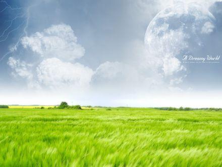 Обои Поле с зелеными колосьями на фоне неба и молнии (A Dreamy World а mans dreams are an index to his greatness / Грезящий Мир мужской мечты, статус для его величия)