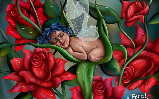 Обои Младенец с синими волосами, прозрачными крылышками ангелочка, спящий на зеленых листьях в окружении красных цветов
