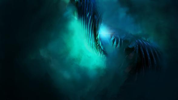 Обои Огромные крылья в синем тумане