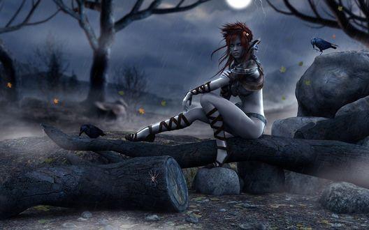 Обои Эльфийка сидит на бревнах во время дождя, рядом с ней два ворона
