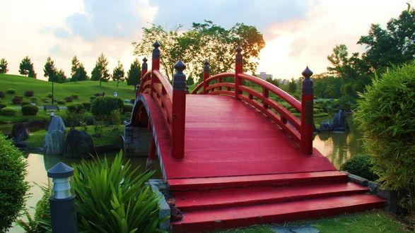Обои Красный пешеходный дугообразный мост, проходящий через пруд в парке, на берегах которого растут ярко-зеленые кусты и деревья