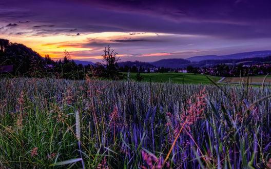 Обои Цветочное поле, расположенное возле дороги, ведущей в небольшой поселок на фоне гор, пасмурного неба и заходящего солнца