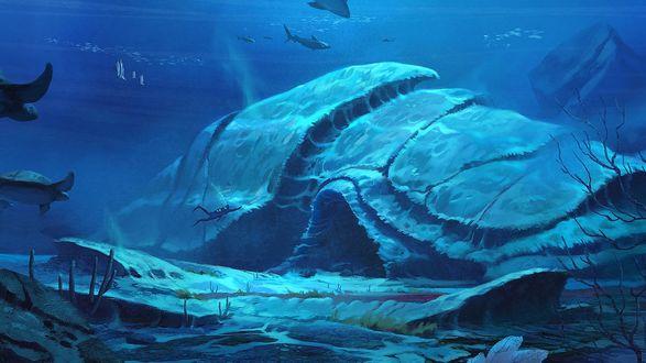Обои На дне моря огромная пещера, покрытая илом, к которой плывет водолаз
