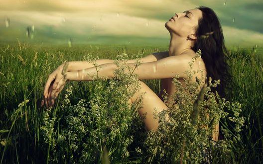 Обои Обнаженная девушка в высокой траве наслаждается летним дождем