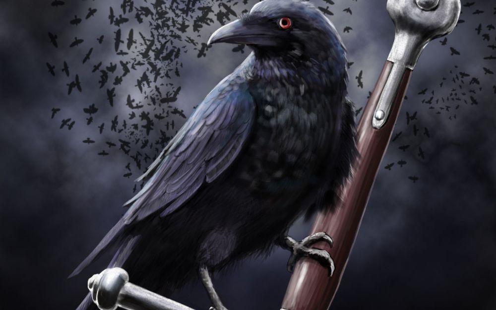 скачать торрент черный ворон - фото 3